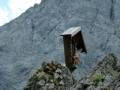 Abstieg Richtung Toralm
