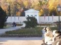 Badner Parks