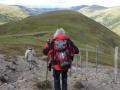 Abstieg vom Sauereggnock
