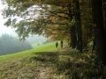Abstieg nach Michelbach