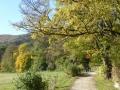 Weg zum Husarentempel entlang der Meiereiwiese