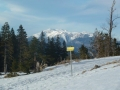 Schneebergblick auf der Rundloipe Feistritzsattel