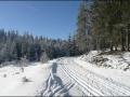 Autobahn vom Hanslteich zur Dreikönigswegscheid