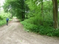 Rohrwald