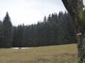 Bruderndorferwald