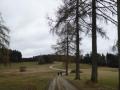 Langschlägerwald