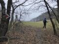 Weg zum Sattelberg