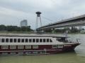 Donau mit der Brücke Most SNP