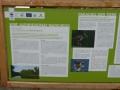 WWF Auenreservat mit  Storchenhaus und Aussichtsplattform