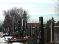 """Den Stammersdorfer Friedhof hat Ludwig Hirsch in seiner """"Oma"""" verewig"""