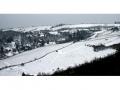 Weingärten im Schnee