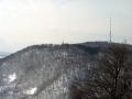 Blick zum Kahlenberg