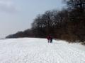 Weg über die Cobenzlwiese