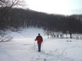 Bei der Jägerwiese beginnt der Gipfelsturm auf den Hermannskogel