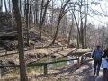 Teich im Dehnepark