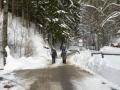 Straße entlang des Schoberbaches