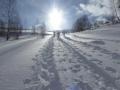 mit Schneeschuhen bergan