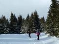Abstieg Kaltenbachgraben