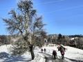 Schneeschuh Türnitz Eisenstein