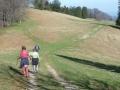 Abstieg Richtung Gscheid - Hohenstein