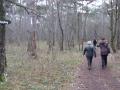Weg zum Harzberg
