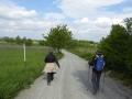 am Kirschblüten-Radweg nach Breitenbrunn