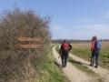 Weg von Neudörfl nach Pöttsching