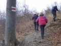 Aufstieg zum Hermannskogel