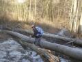 Abstieg zur Jägerwiese