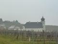 Thallern - Weingut des Stiftes Heiligenkreuz