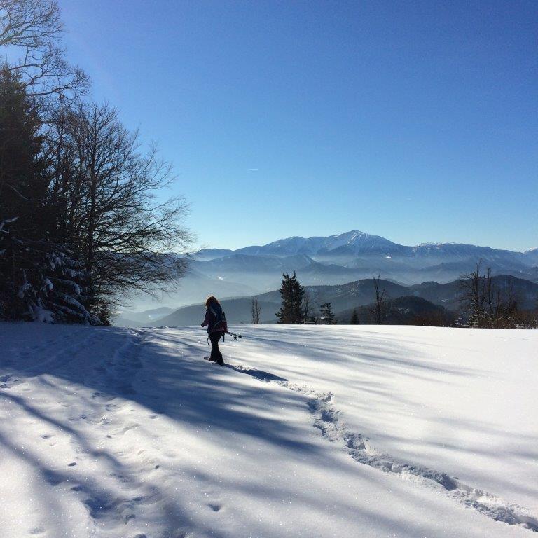 am Almesbrunnberg im Hintergrund der Schneeberg