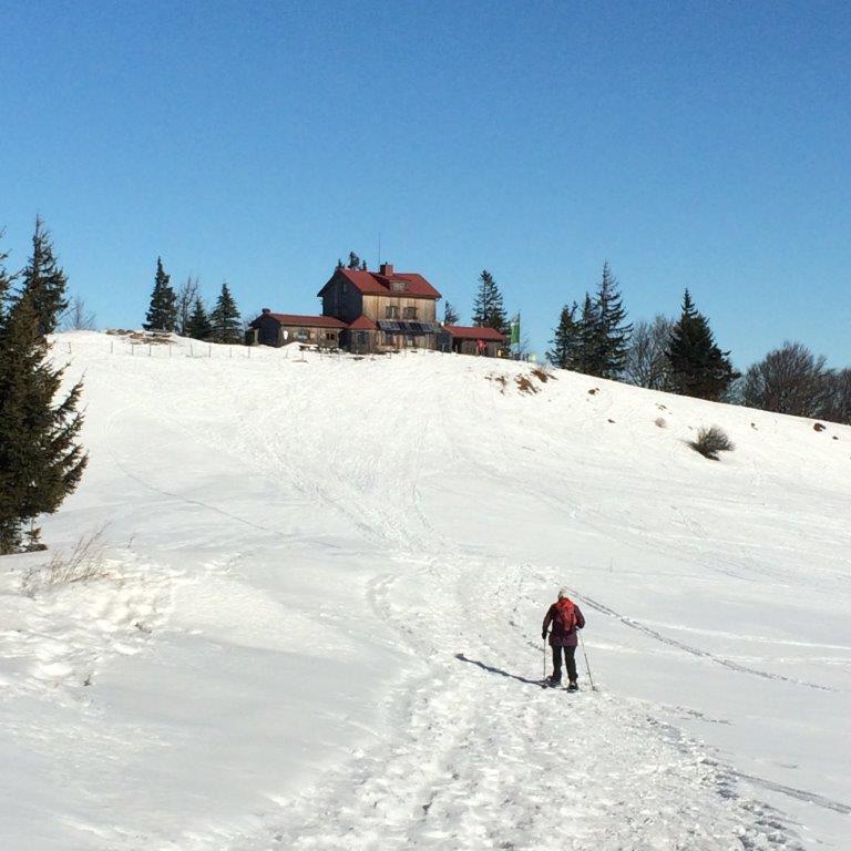 Anstieg zur Julius Seitner - Hütte