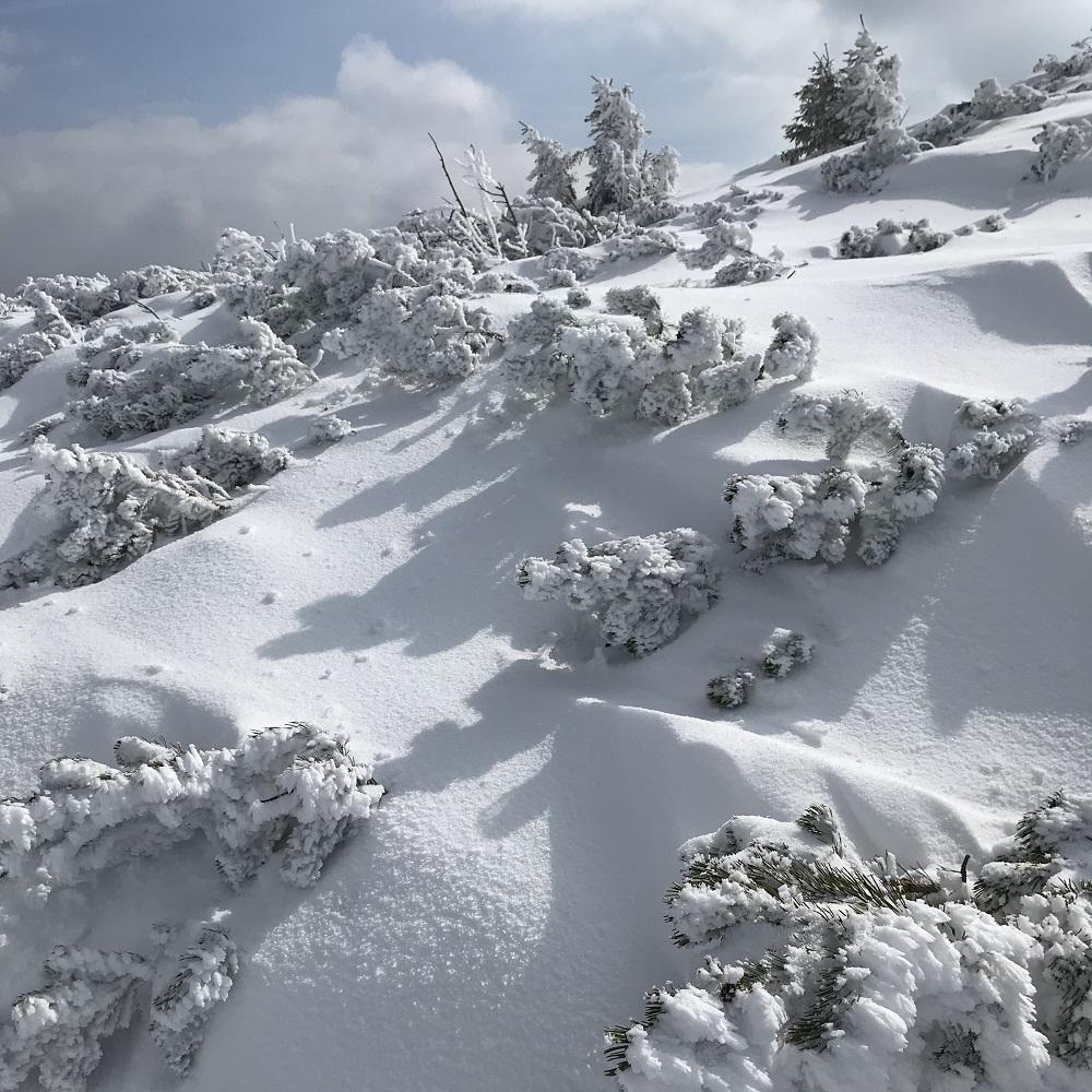 Schneeschuh Rax