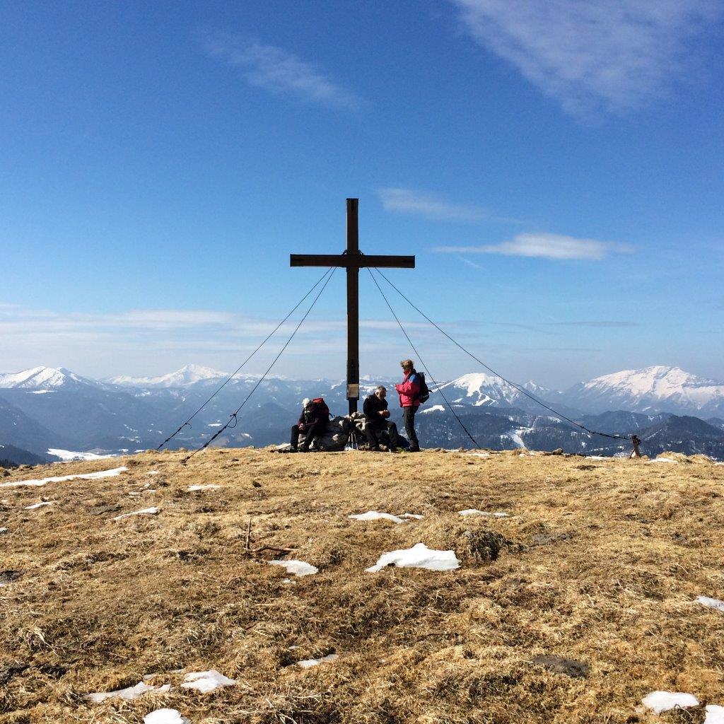 Gipfel der Wildalpe (1.523 m)