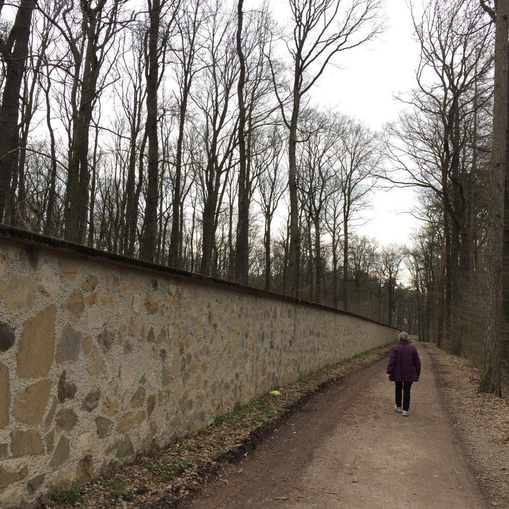 Die Tiergartenmauer