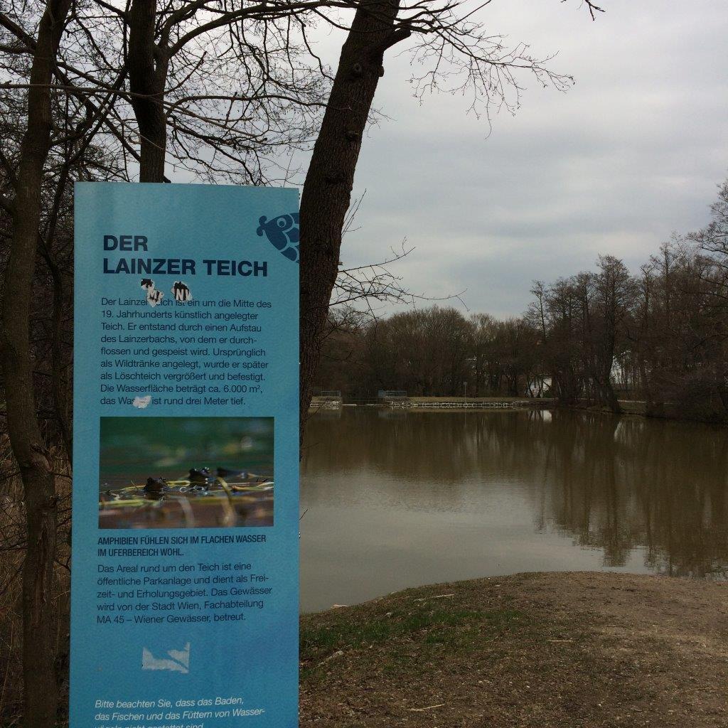 Der Lainzer Teich beim Lainzer Tor