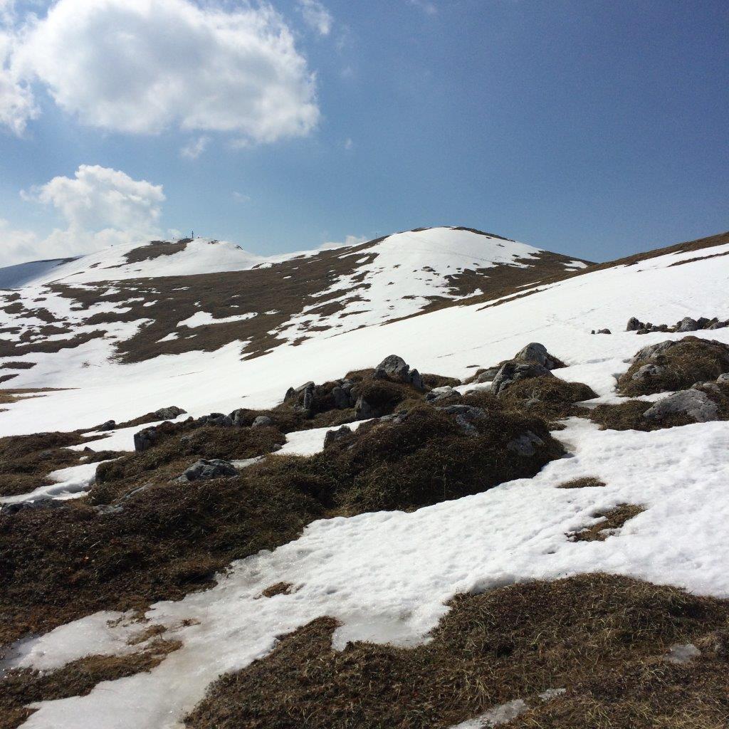 Gipfel der Hohen Veitsch (1.981 m)