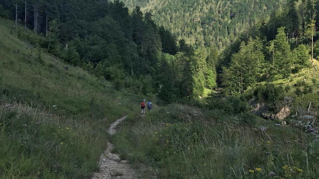 Abstieg zur Bundesstraße nach Langau