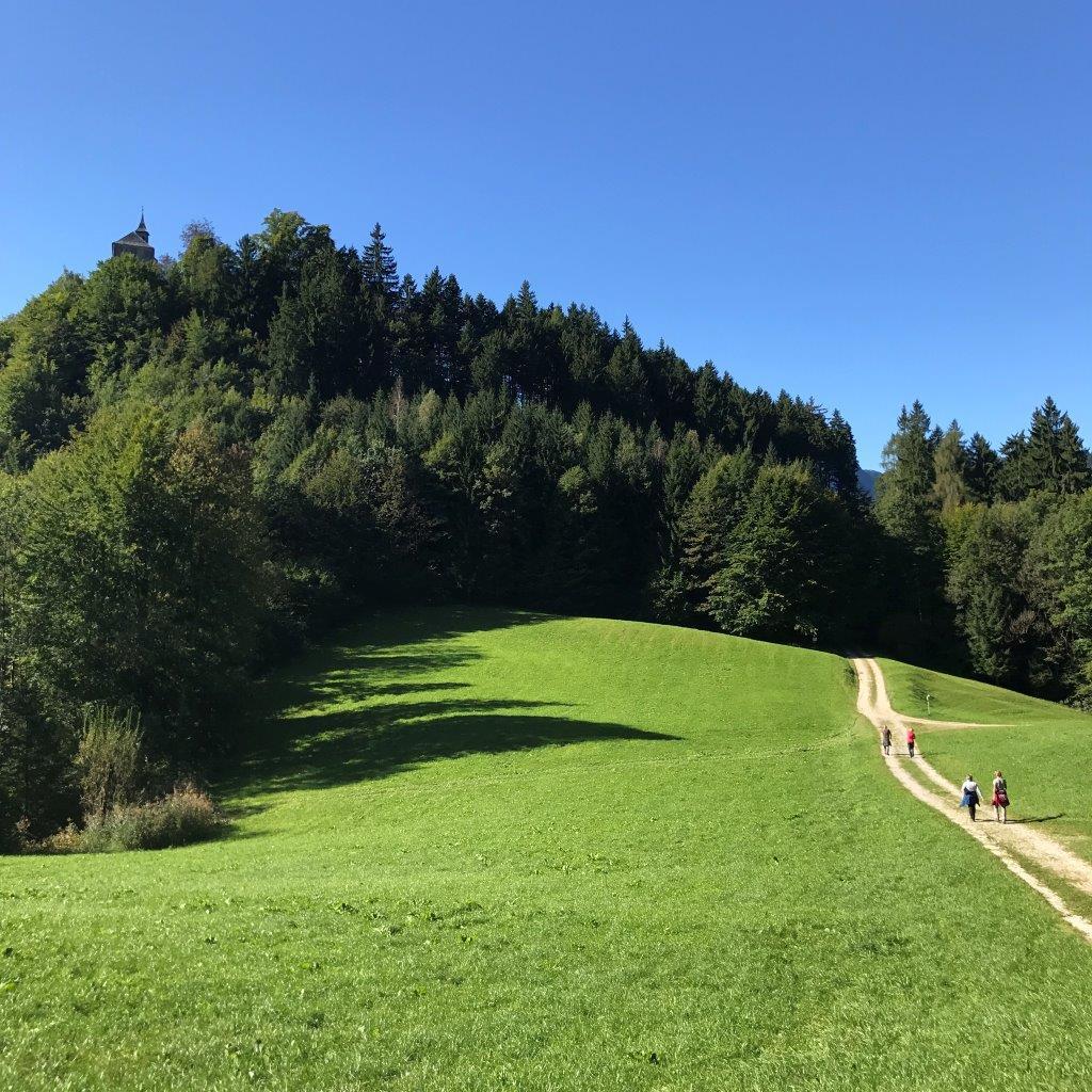 Aufstieg zum Thierberg