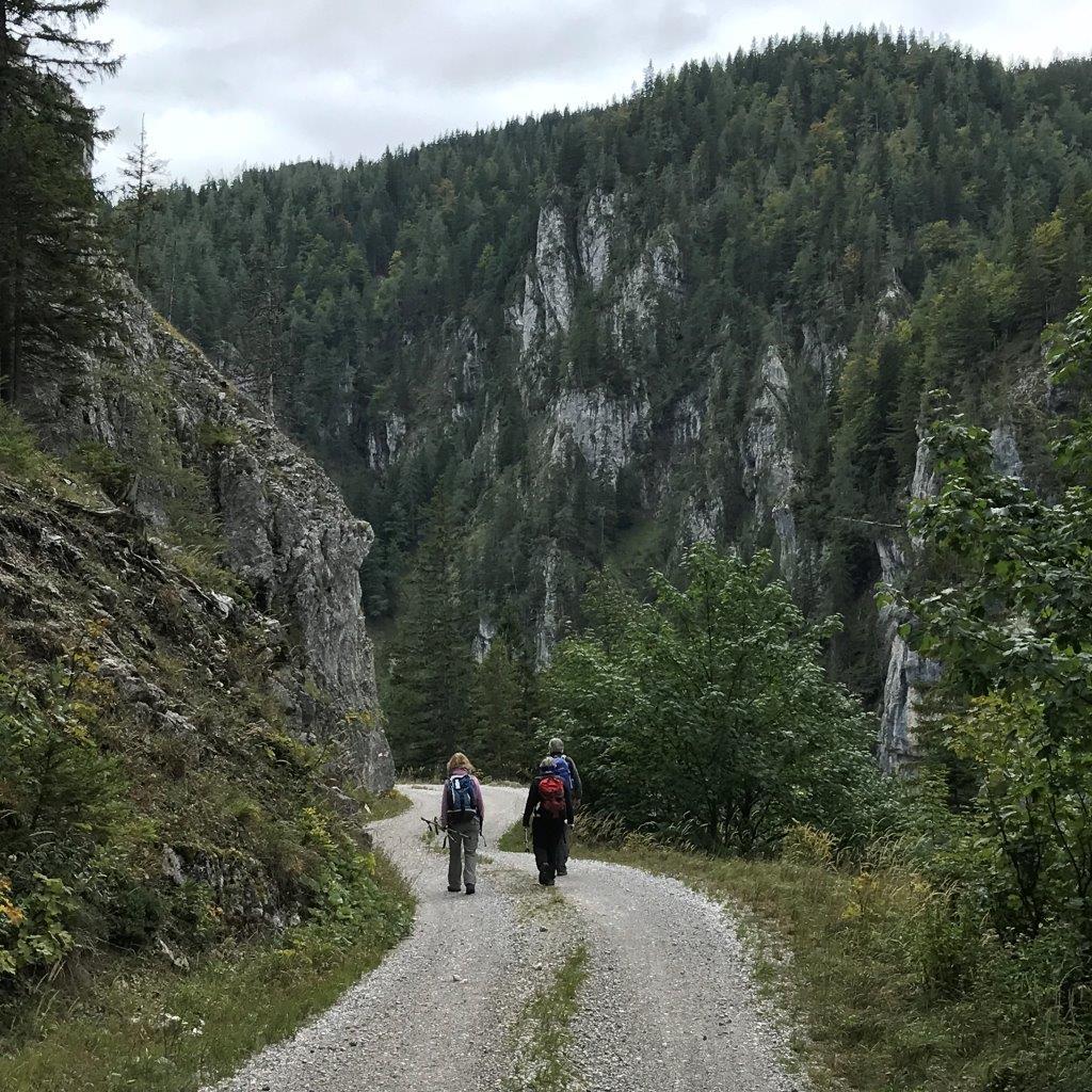 Abstieg nach Hinternaßwald