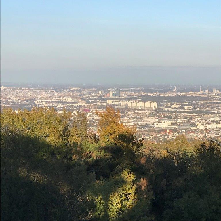 Blick auf Wien vom Parapluiberg