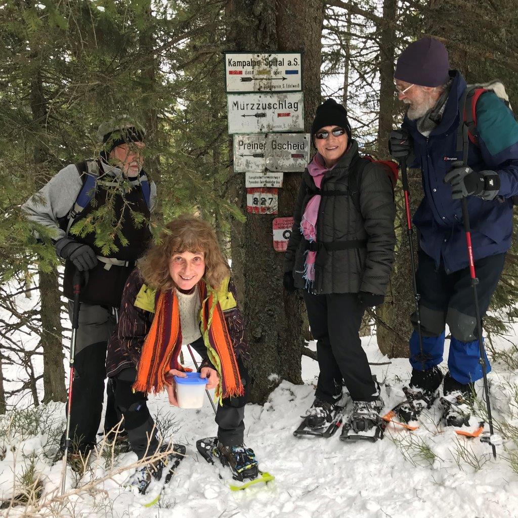 Trattenkogel (1.565 m)