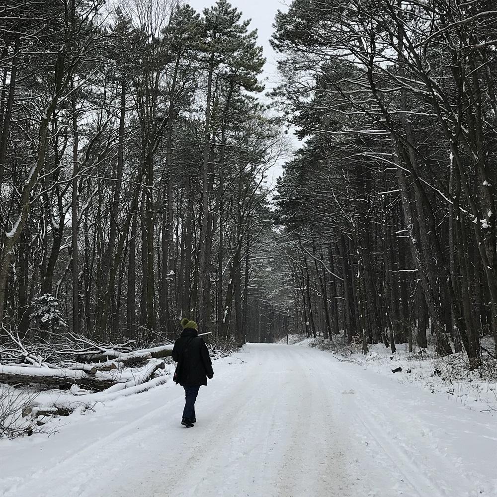 Weg zur Kugelwiese