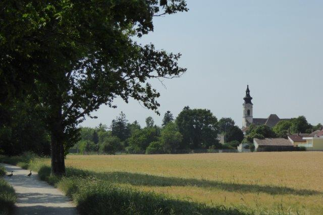Radtour am Liesingbach bei Oberlaa