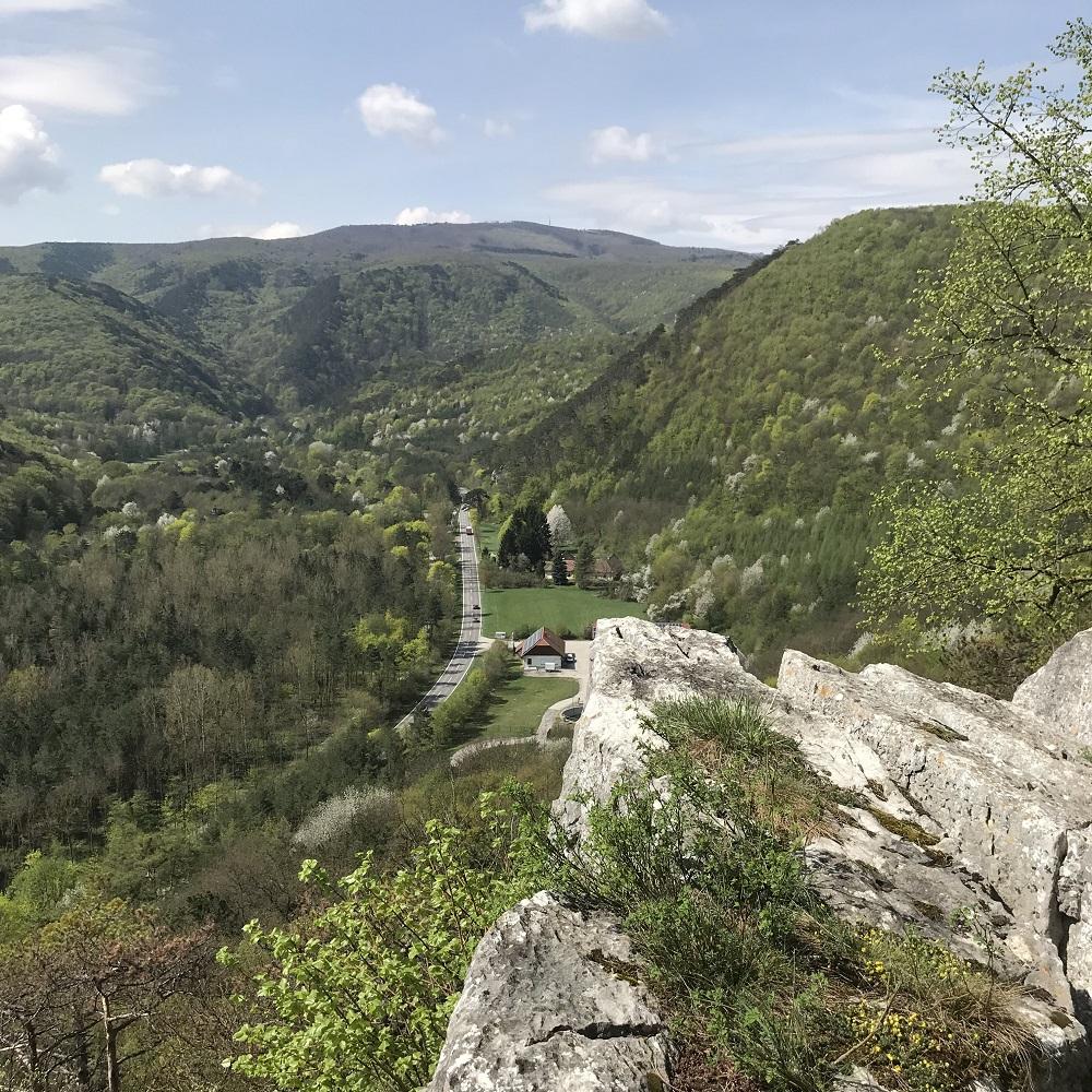 Blick vom Schwarzberg ins Helenental