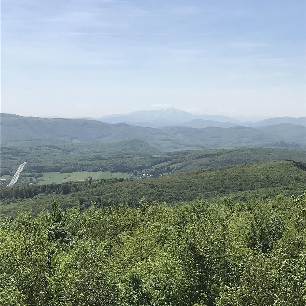 Blick vom Julienturm zum Schneeberg