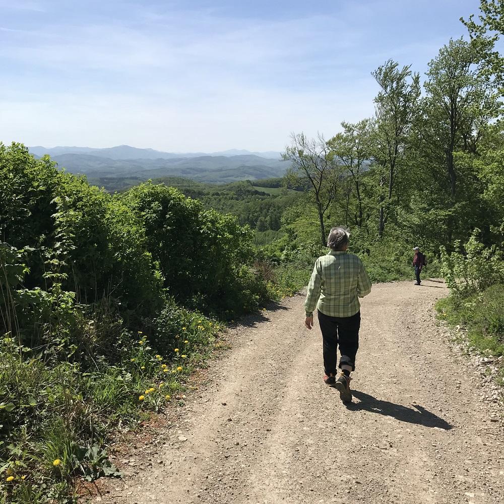 Abstieg vom Höllenstein