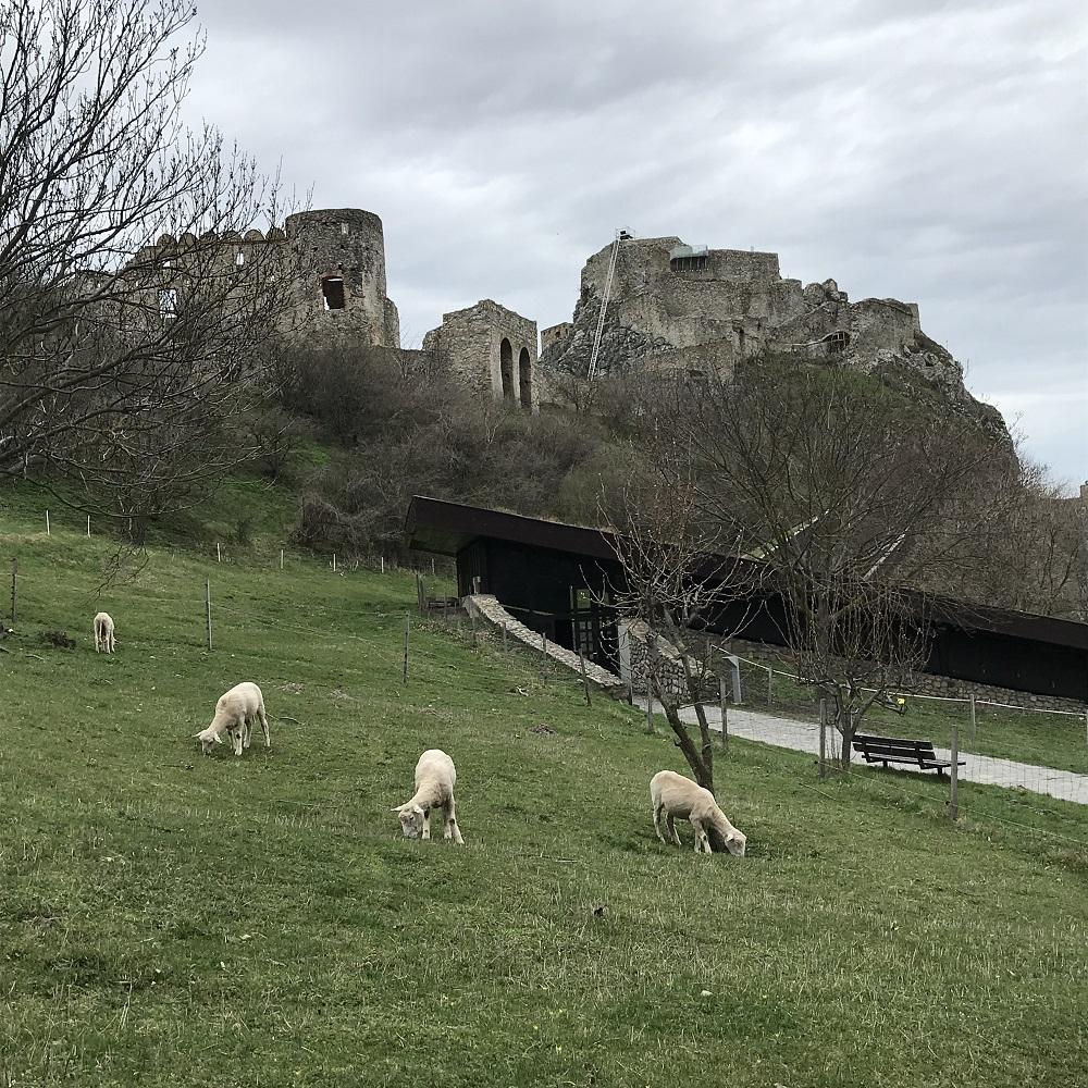 Burg Devin