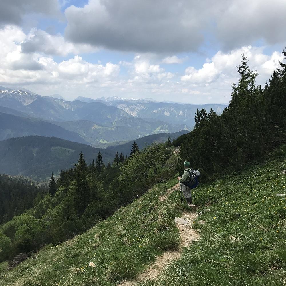 Abstieg zum Niederalpl mit Blick zum Hochschwab-Massiv