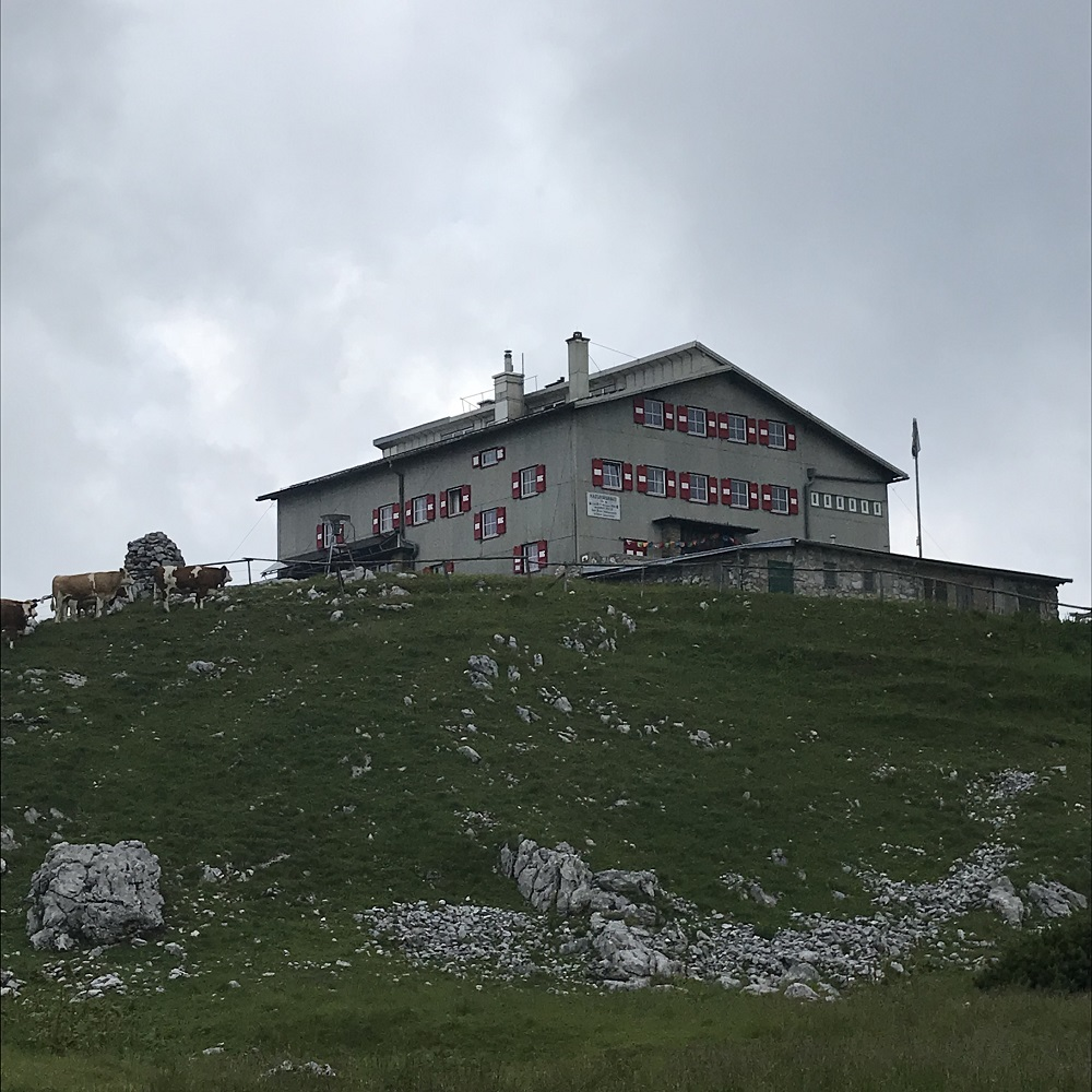 Habsburghaus